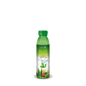 You& Aloe Vera Green tea 500 ml